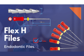 Endo H Files and its features in one glance
