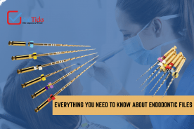 Know more about Endo files